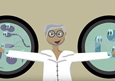 Archaeas – information animation